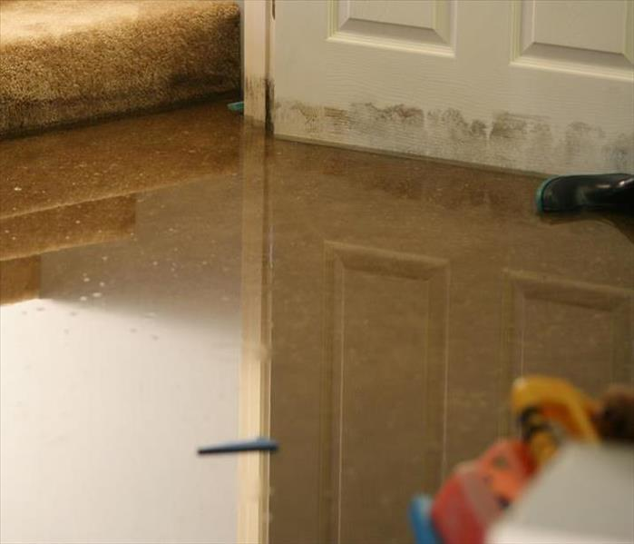 Biohazard Contaminated Water Damage DOs and DON'Ts