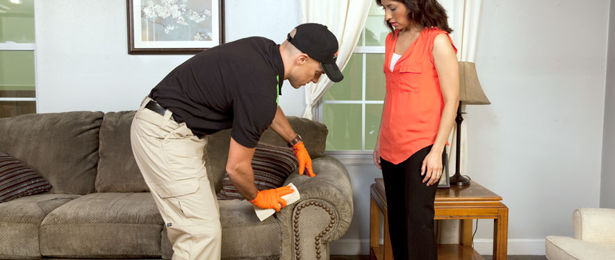 University Place, WA carpet upholstery cleaning